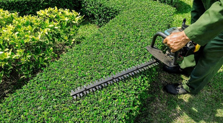 Growing Markets: A Look at Trends in the Landscaping Industry